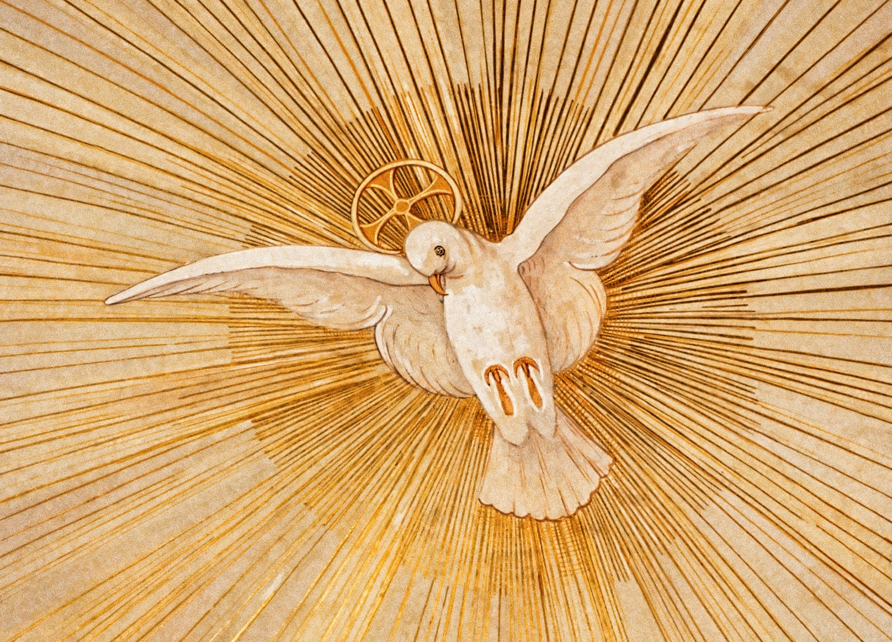 Seminar Saturday: I Believe in the Holy Spirit: Meeting the Breath of God in Scripture