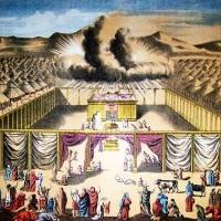Leviticus - Deuteronomy